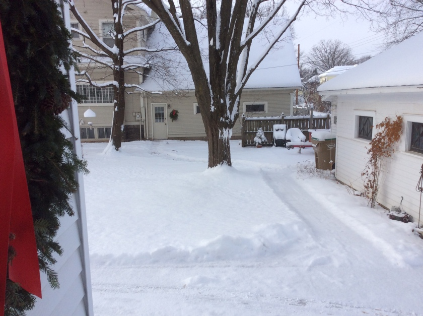 161214bbcut-snowpath