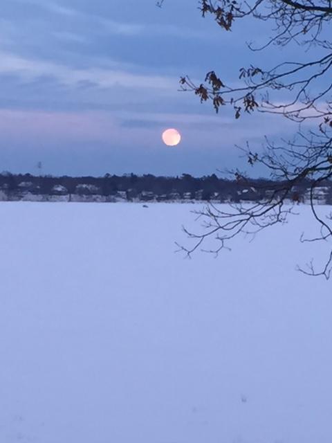170113bbcut-moonrise