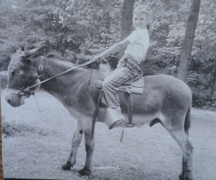 170228bbcut-donkeybaseball1