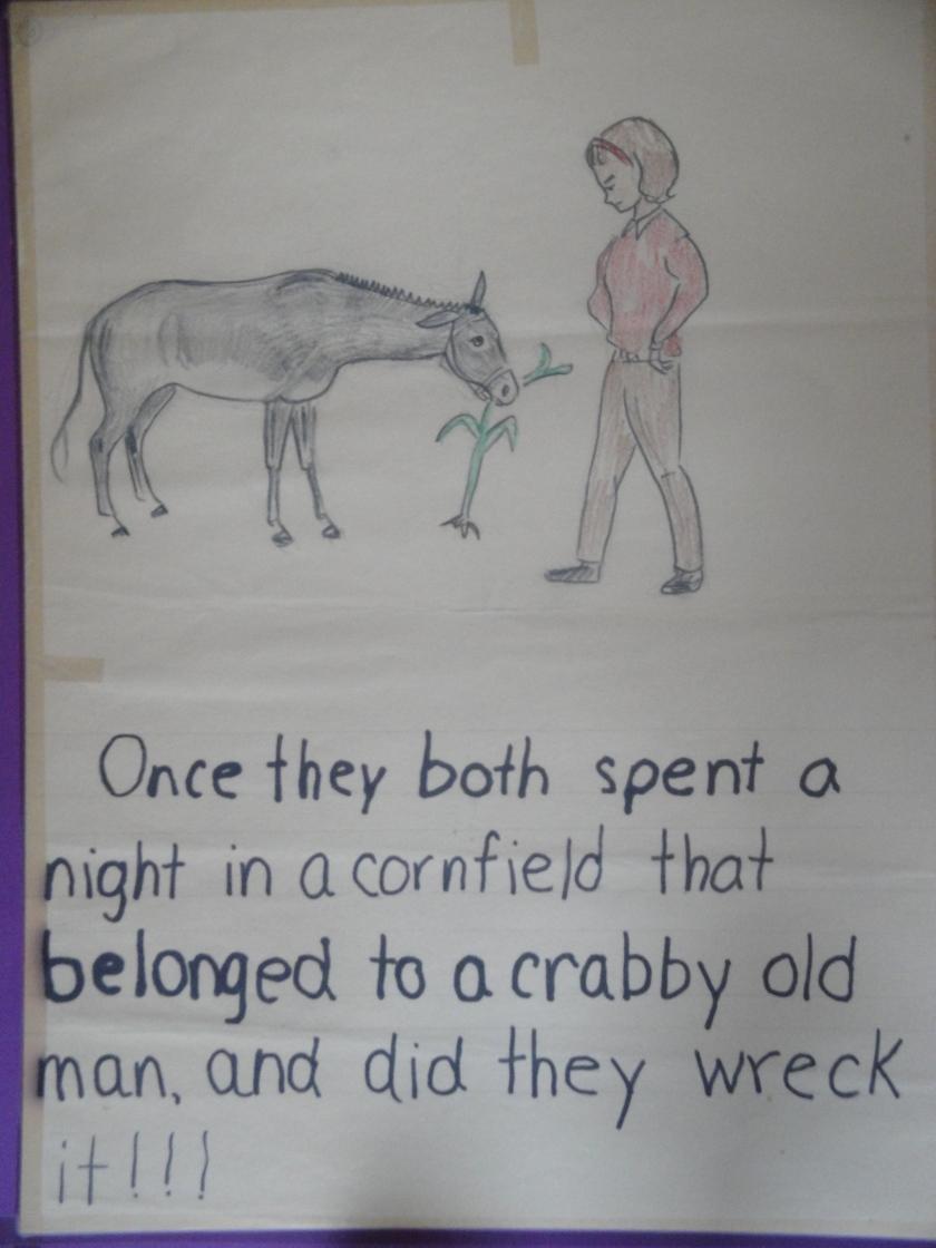 170303bbcut-donkeys2