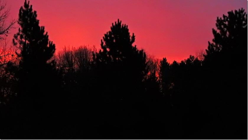 170403bbcut-sunrise
