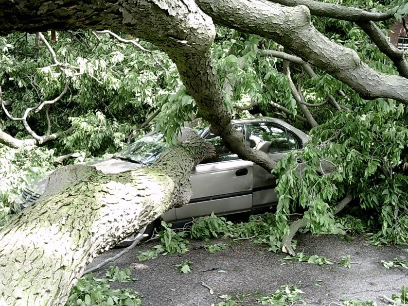 170913bbcut-storm1