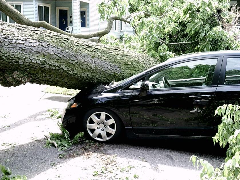 170913bbcut-storm2