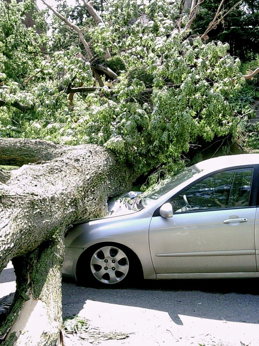 170913bbcut-storm3