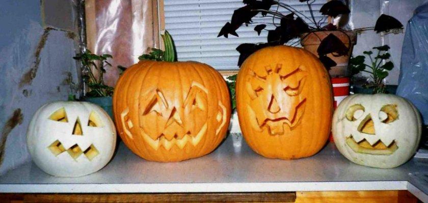 171031bbcut-pumpkins4