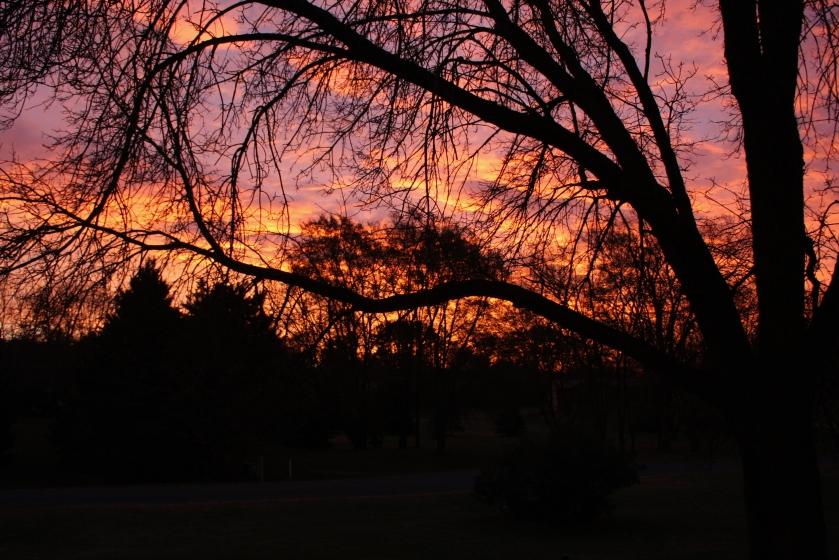 171110bbcut-sunrise