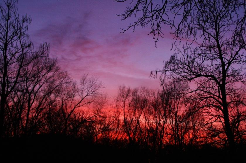 171129bbcut-sunset1