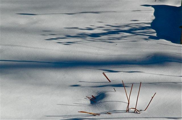 180117bbcut-snow4
