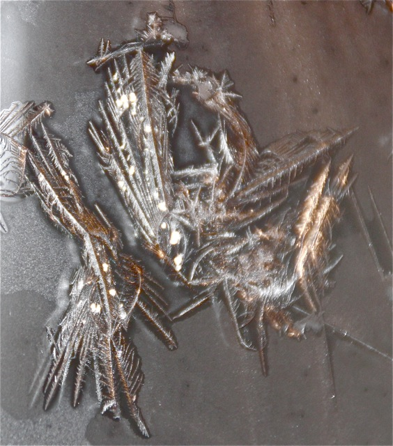 180120bbcut-frost1