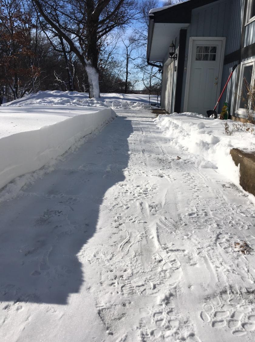 180124bbcut-snowgone