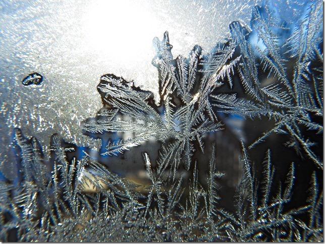 180130bbcut-frost5
