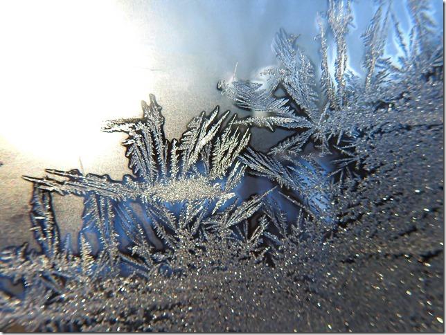 180130bbcut-frost8