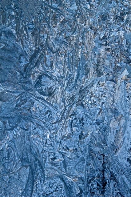 180205bbcut-frost5