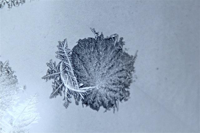 180208bbcut-frost2