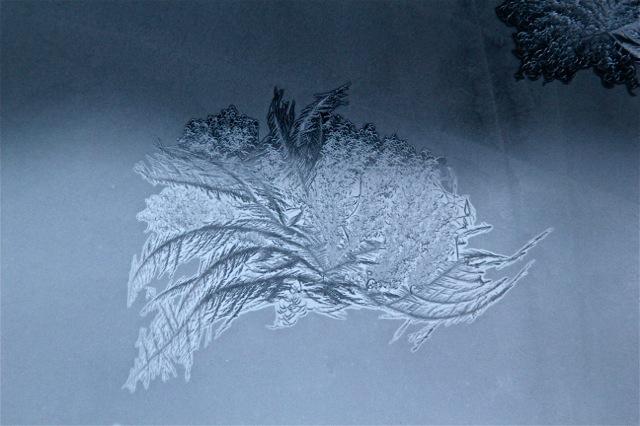 180208bbcut-frost3