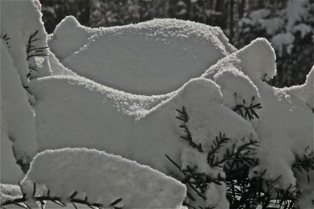 180403bbcut-snowlight4