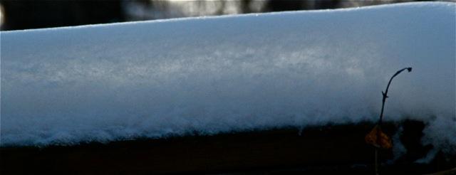 180405bbcut-snow3