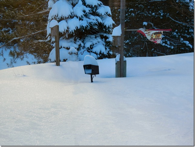 180416bbcut-snowstorm2