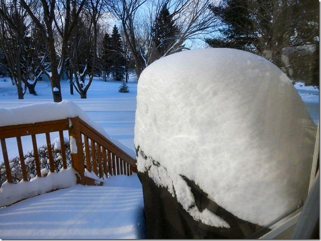 180416bbcut-snowstorm4