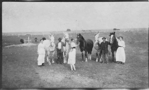 180419bbcut-horsefamily