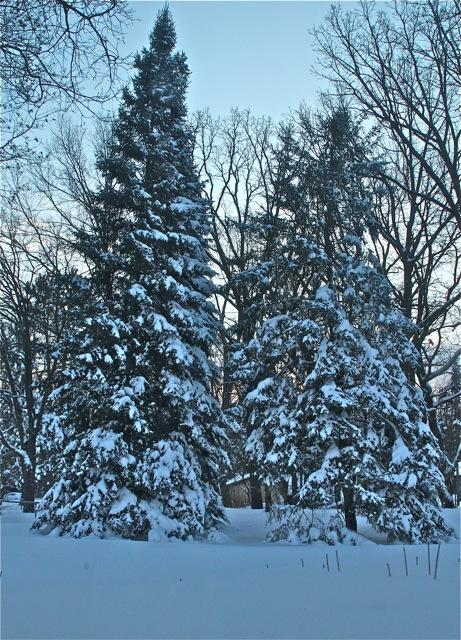 180419bbcut-snow1