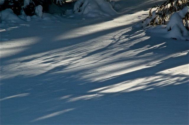 180419bbcut-snow4