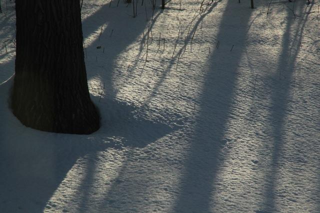 180423bbcut-icicles2