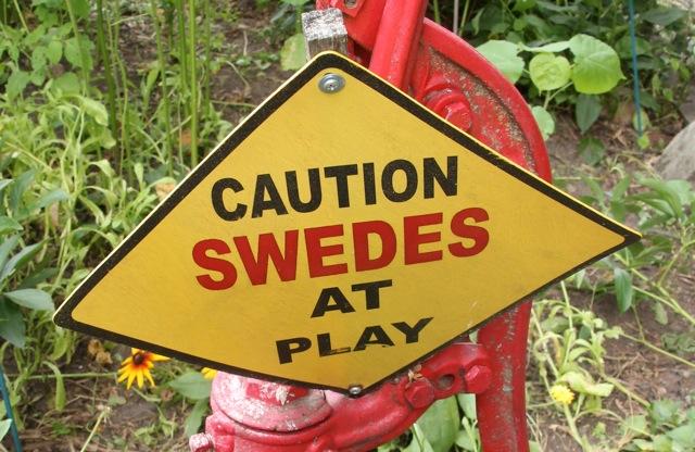 180730bbcut-swedes1