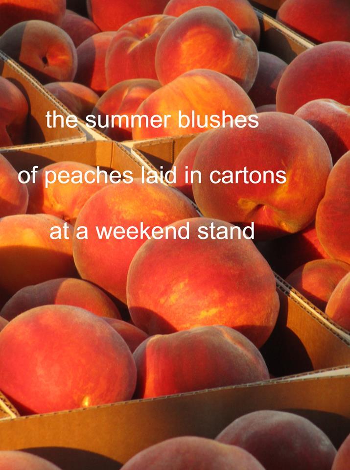 180923bbcut-peachhaiku