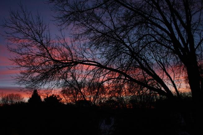 181222bbcut-sunrise