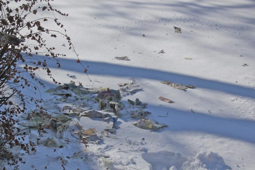 190130bbcut-snowblow2