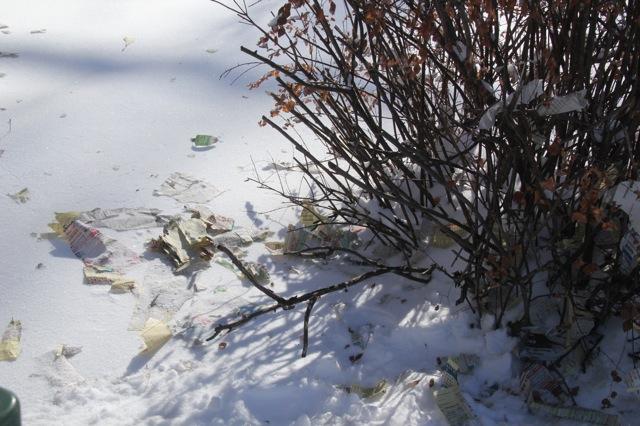 190130bbcut-snowblow3