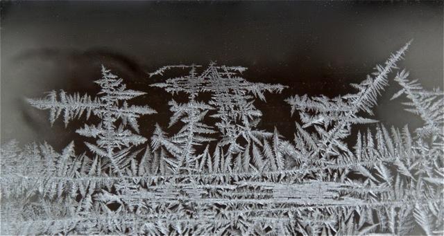 190212bbcut-frost1