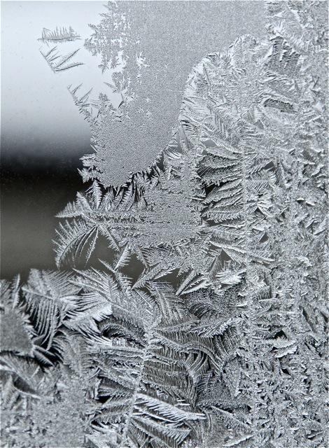 190212bbcut-frost3
