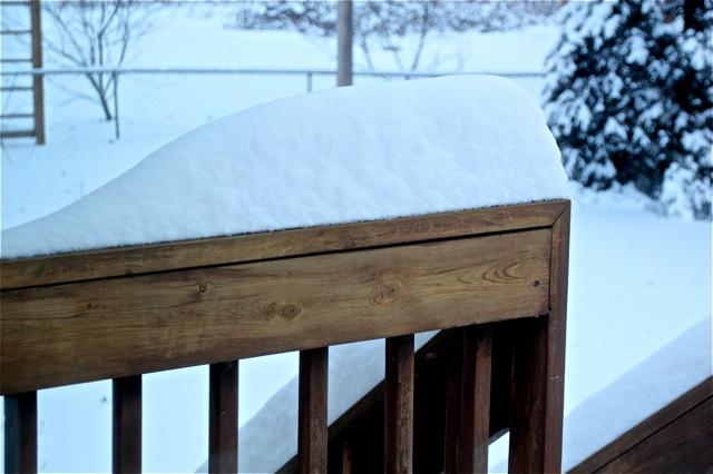 190212bbcut-snow2