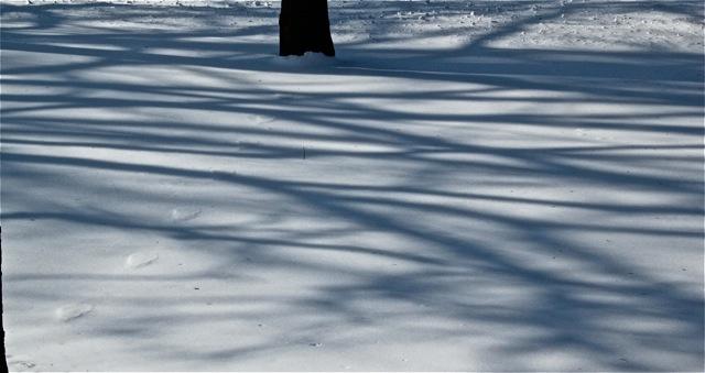190212bbcut-snowpatterns3