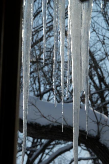 190226bbcut-icicles11