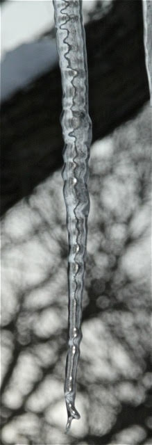 190226bbcut-icicles12