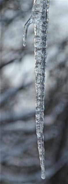 190226bbcut-icicles7