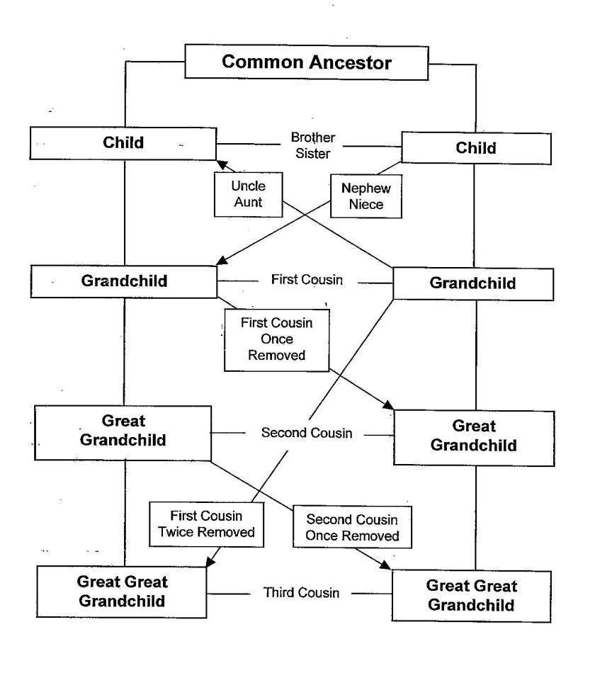 190325bbcut-relationshipdiagram