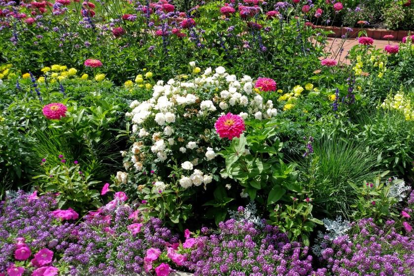 090416bbcut-flowers5