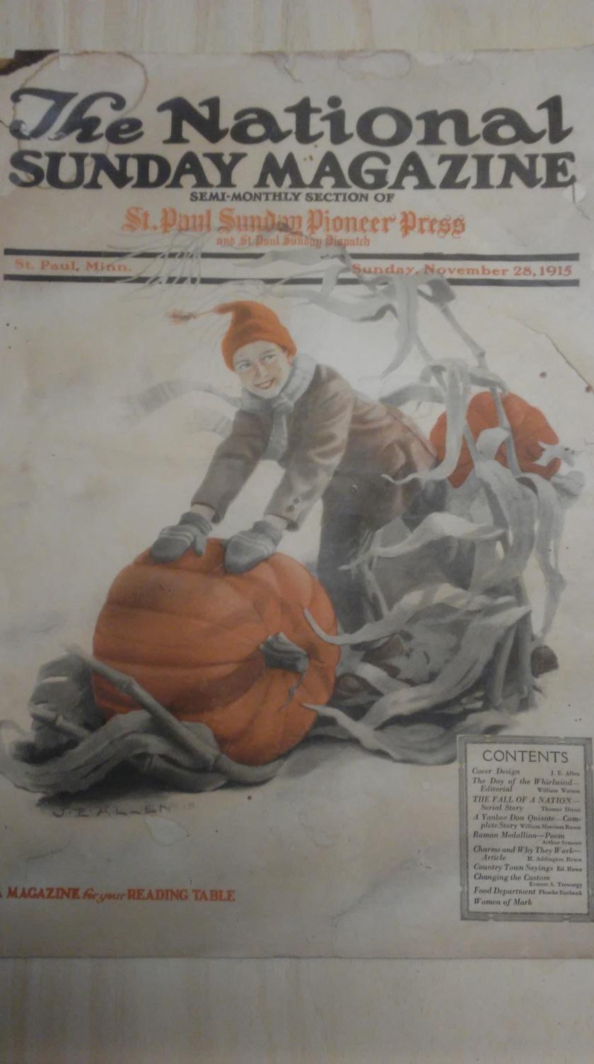 190501bbcut-horntoad1