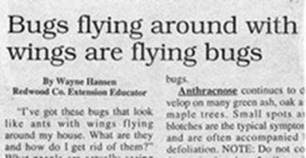 190806bbcut-headlines9