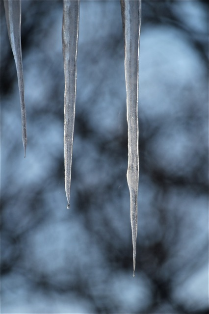 191229bbcut-icicle1