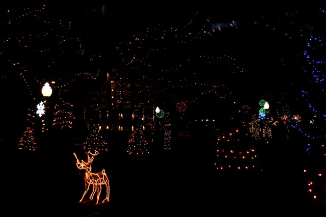 200111bbcut-lights4