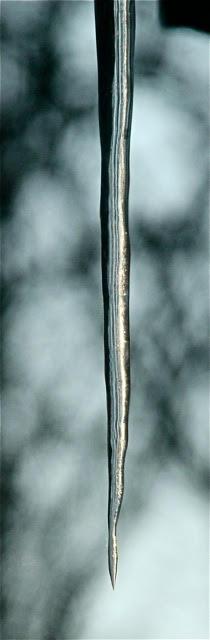 200204bbcut-swede9