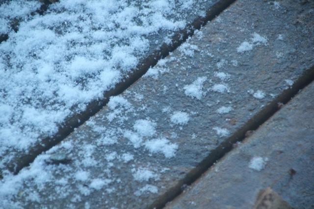 200309bbcut-snow3