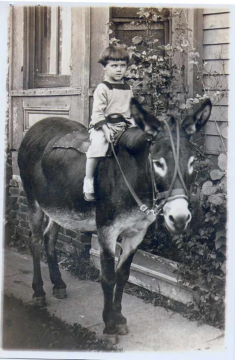 Blind (?) kid on mule