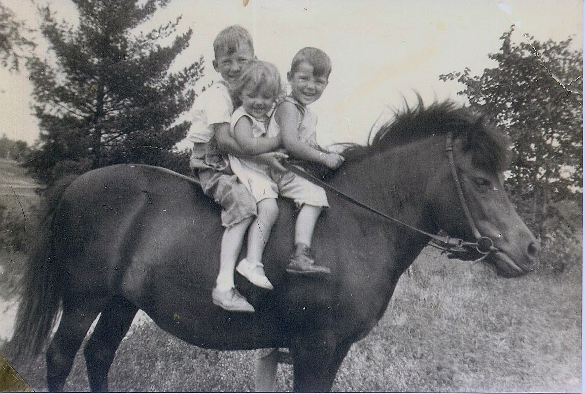 Brevold kids on horse